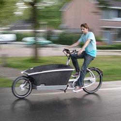 Urban Arrow Bikes
