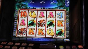 Sociale Casinos in Nederland