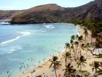 ハワイ島ハマウマベイ