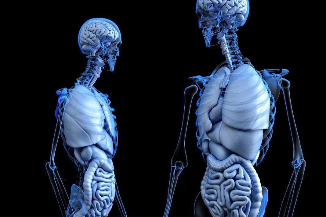 Apa itu Penyakit Hepatitis B dan Bagaimana Penularannya? | Berita ...
