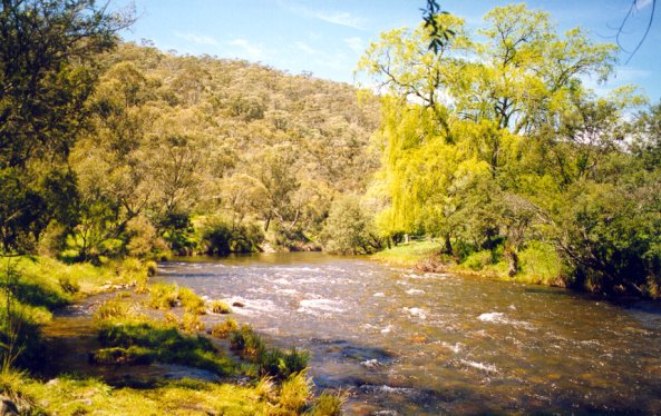 Goodradigbee River in the Brindabella Valley