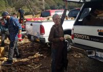 volunteer loading firewood into truck