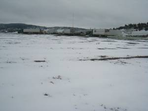 April Snow Showers at Gold Dust Potatoes in Malin, Oregon