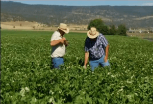 John and Bill Walker Inspecting A Field In The NPC 2010 Environmental Stewardship Video