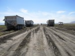 Potato trucks waiting to be filled with chipping potatoes in a field near Tulelake, CA.