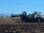 A potato bulker works a Malin-area potato field with Mt. Shasta in the background.