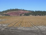A chipping potato field on the Running Y Ranch ready for October potato harvest.