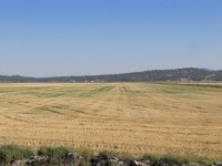 A cut grain field at the Running Y Ranch outside of Klamath Falls, OR.