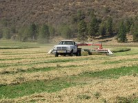 A shortened Dodge pickup pulls a windrower through an alfalfa field at the Running Y Ranch.