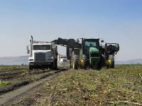 A potato bulker harvests chipping potatoes and then loads them into a potato truck on the Tule Lake Wildlife Refuge near Tulelake, CA.