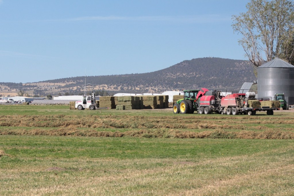 Several pieces of haying equipment in a alfalfa field near Gold Dust's Malin, OR, campus.
