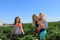 Mari and Rory Hill with Madison Walker in a potato field outside of Malin, OR.