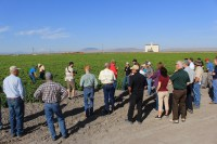 Gold Dust Potatoes' guests gather at a potato field near Newell, CA grown by MD Huffman Farms.