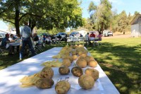 Sample potatoes on a table at Gold Dust's Running Y Ranch headquarters during the 16th Annual Open House Field Day.