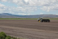 A tractor and planter plant chipping potato seed in a field near Worden, Oregon.