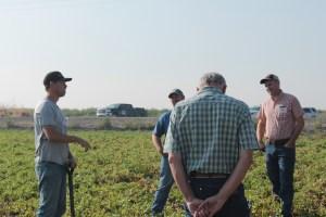 Mark Staunton, potato grower, sharing his family's history in the Klamath Basin in a potato field near his family's original homestead outside of Tulelake, CA.