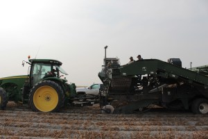 Walker Farms employees work on a potato harvester in a chipping potato field near Newell, CA.