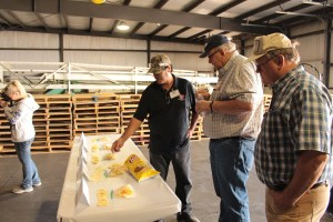 Danny Lopez, Bill Walker and Todd Kepple in Gold Dust Potato Processors' packing shed in Malin, Oregon.