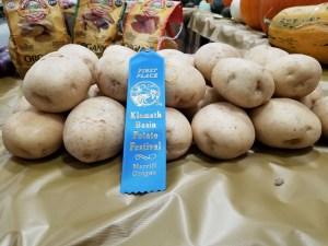 A group of chipping potatoes that won a blue ribbon at the 2018 Klamath Basin Potato Festival.