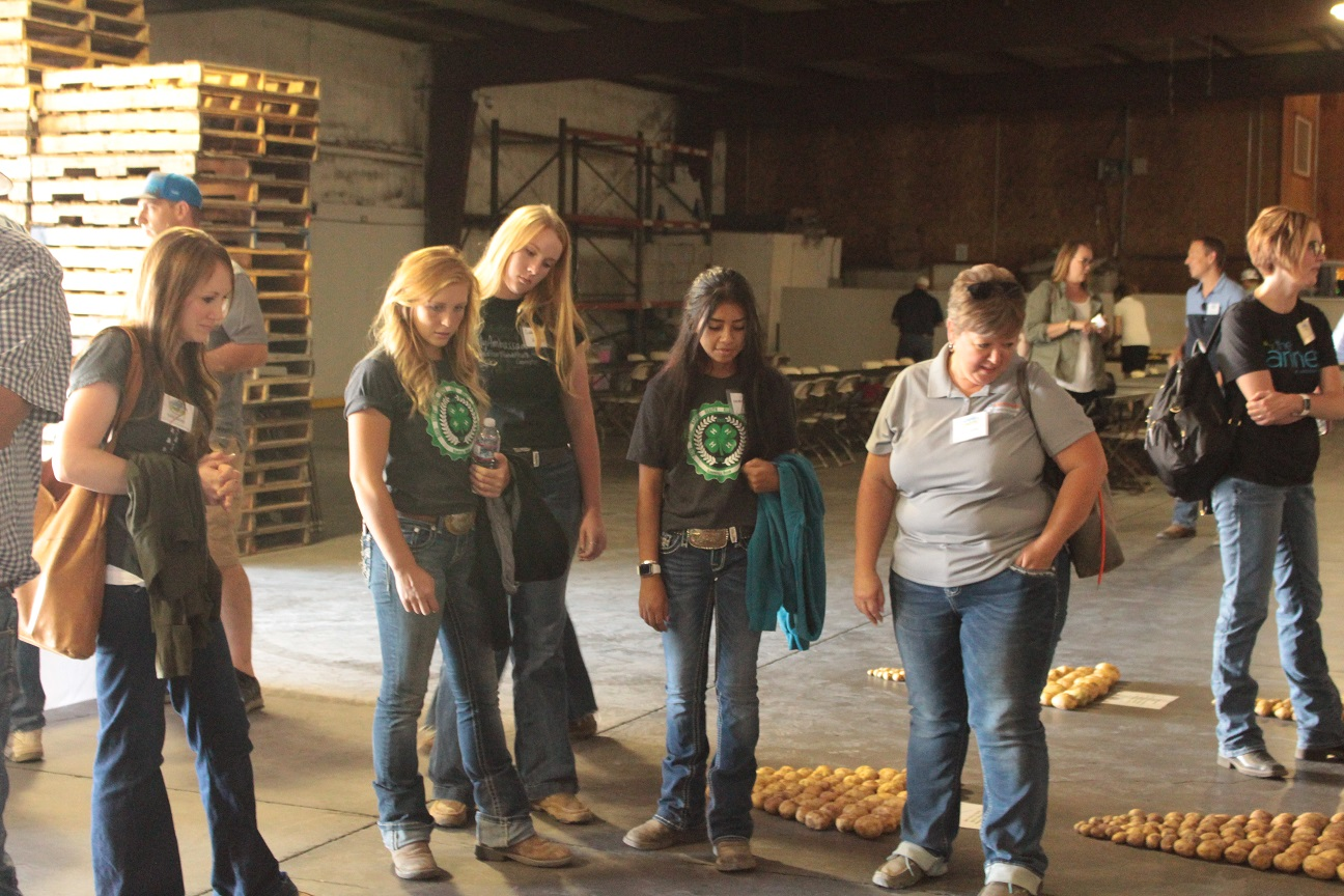 Katie Bailey, Traci Reed and Klamath County 4H girls checking out chipping potato samples.