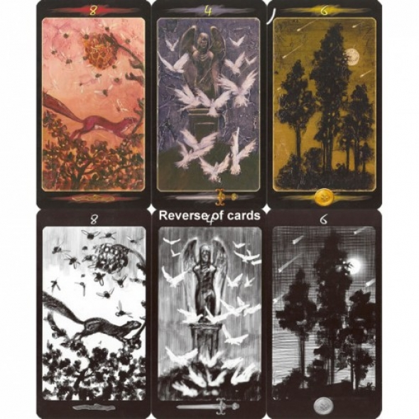 Image result for tarot of the secret forest
