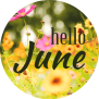 June Events Ideas Activities Calendar