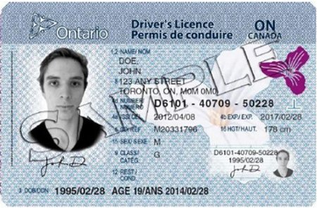 Buy Canadian driver's licence produced with same quality like the original document online. Validation period 5 years. In Canada, driver's licenses