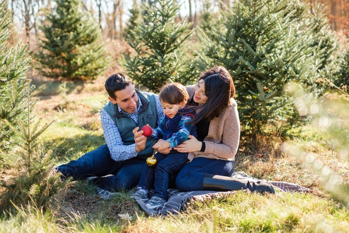 Family Christmas tree farm photo shoot