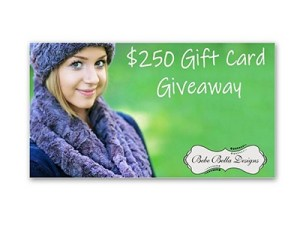 Win a Bebe Bella Designs Gift Card