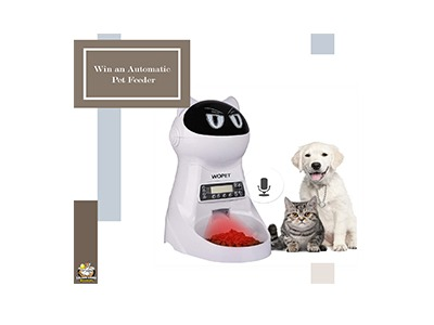 Win a WOPET Automatic Pet feeder