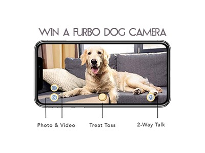 Win a Furbo Dog Camera