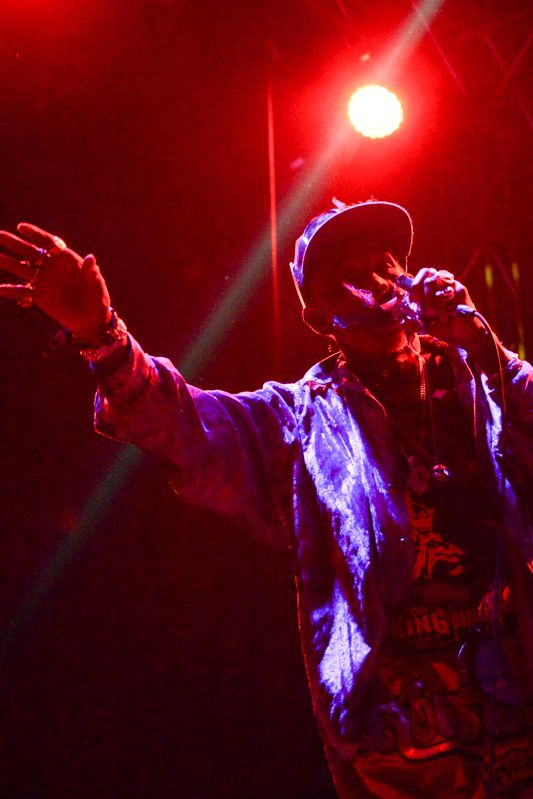 Lee Scratch Perry at Forbidden Fruit on 1st June 2013-1-16