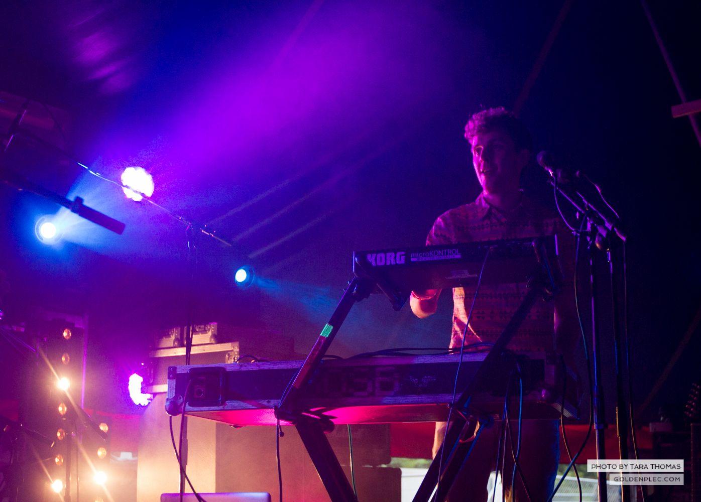 Sounds of the System Breakdown at Castlepalooza by Tara Thomas