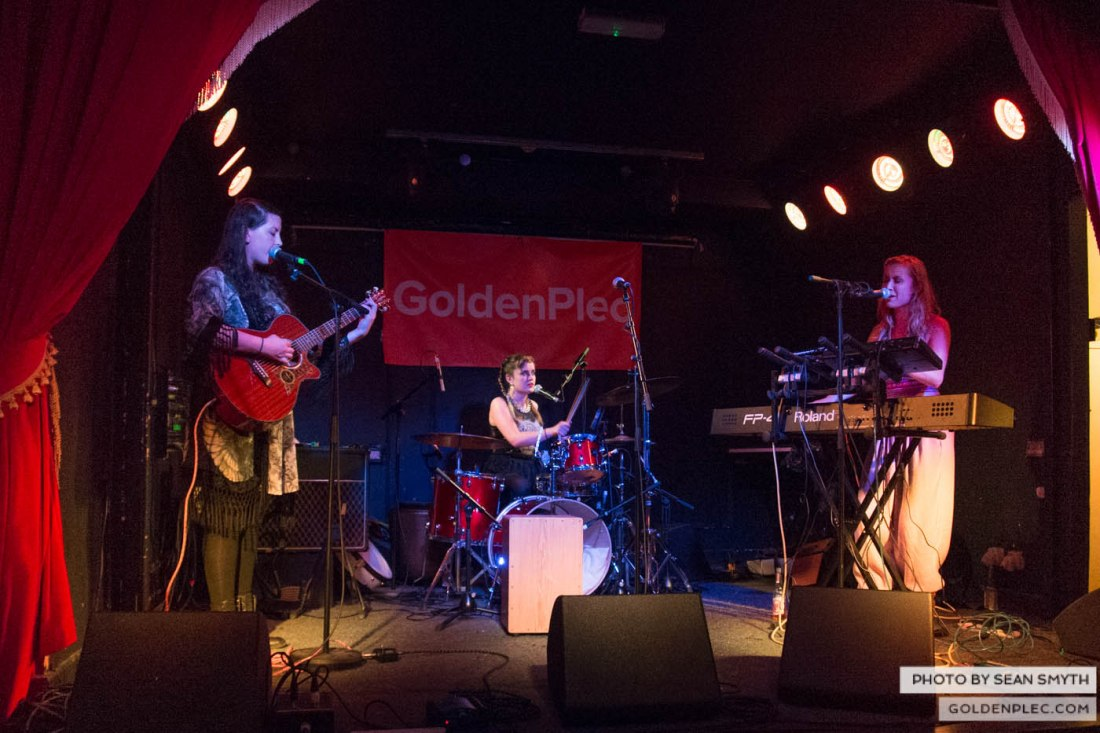 Wyvern Lingo at the The Workman's by Sean Smyth (14-1-14) (5 of 7)