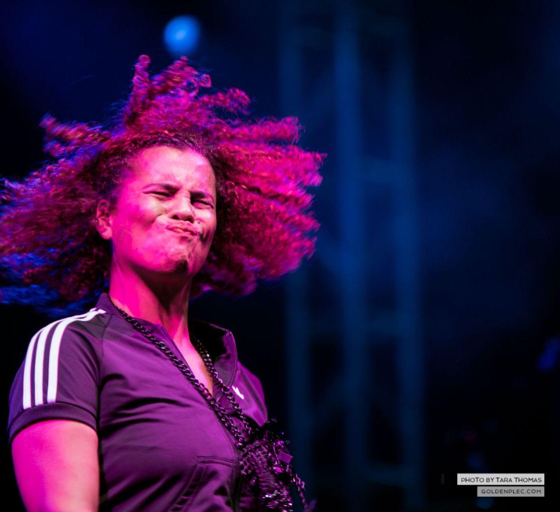 Neneh Cherry at Electric Picnic by Tara Thomas