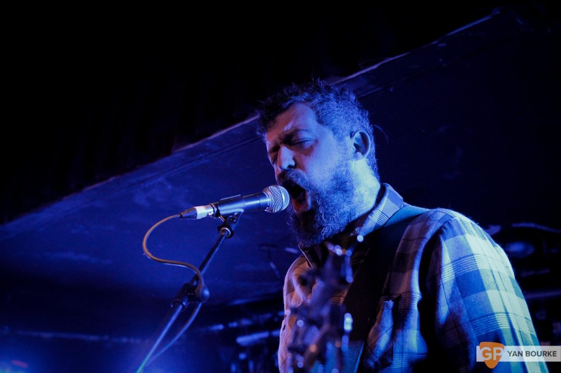 Elk at Whelan's on 25 November 2017 by Yan Bourke
