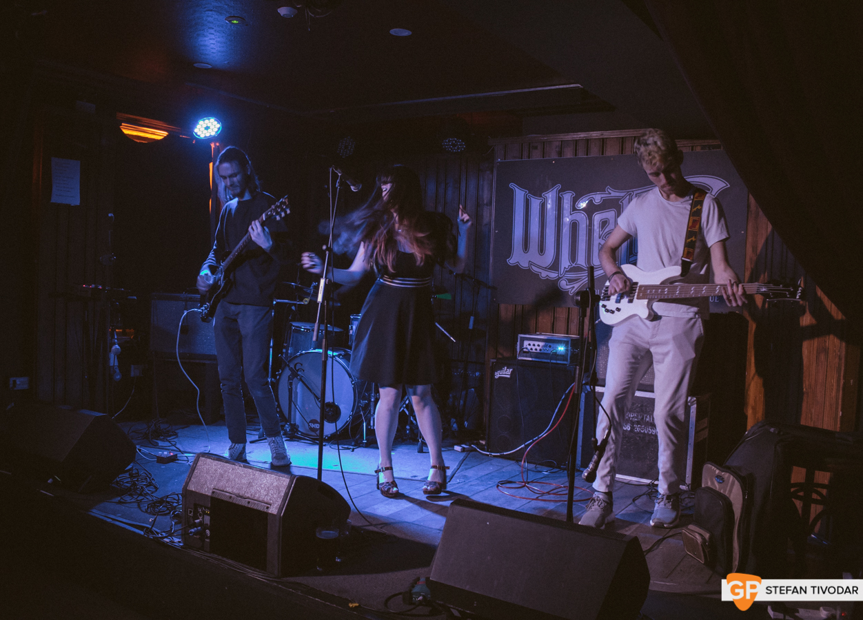 Pecking Party Whelans Ones to Watch Winter 2019 Day Whelans Ones to Watch Winter 2019 Day 5 6