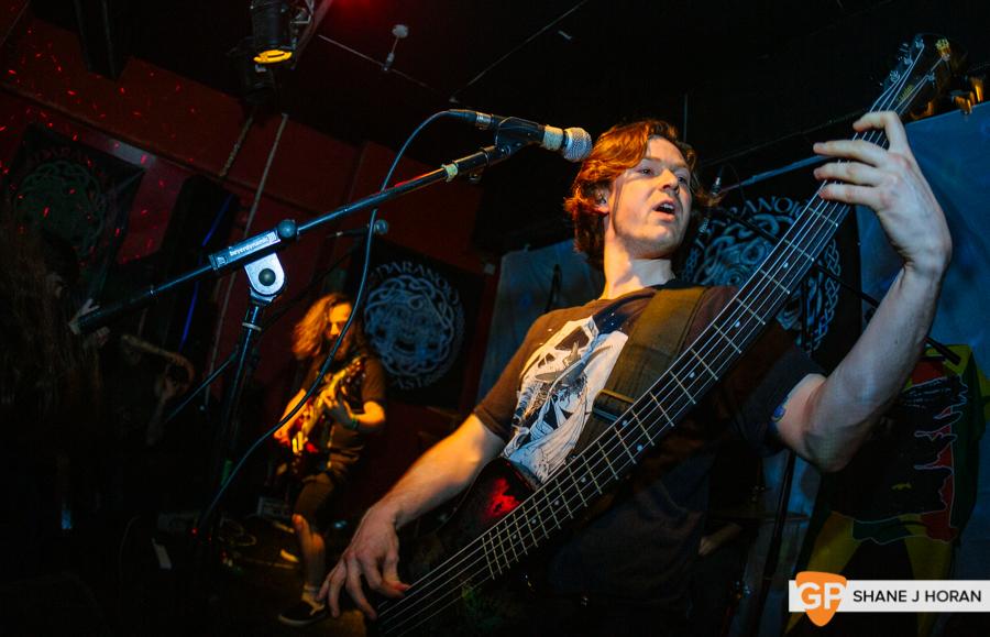 Grey Stag, Fred Zeppelins, 9-3-16, Shane J Horan-4