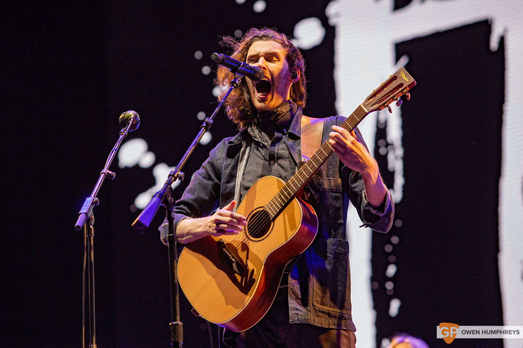 Hozier at Electric Picnic 2019. Photo by Owen Humphreys. www.owen.ie