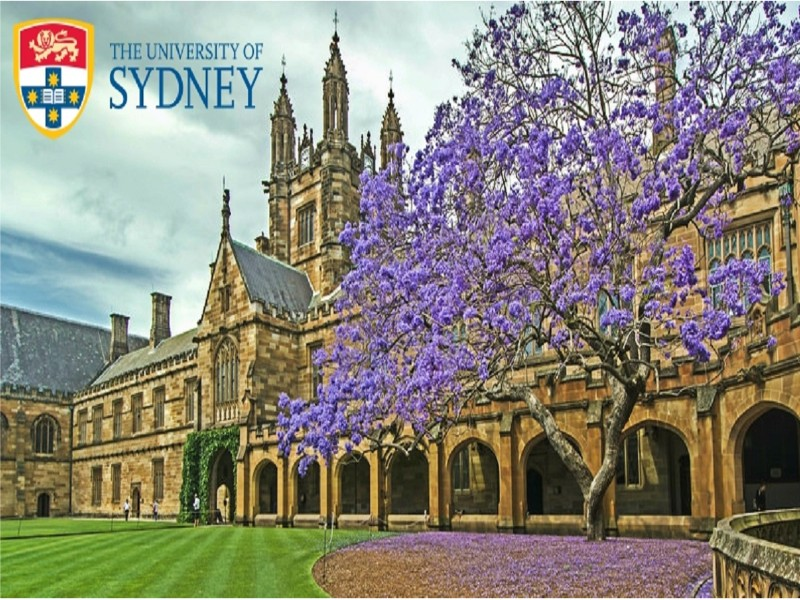 Fully Funded Information Systems Scholarships at University of Sydney in Australia