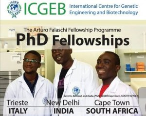 ICGEB Arturo Falaschi Fellowship 2021/2022 for Scientists in Developing Countries