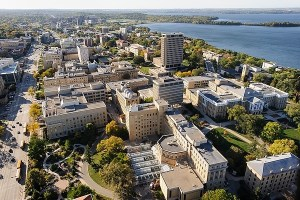 Fellowship at the University of Wisconsin in the USA