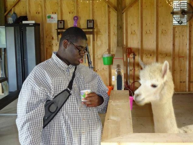Elijah P and the Alpaca