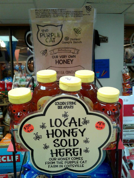 Purple Cat Honey Now Available Golden String Inc