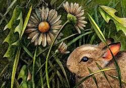 Spring Bunny 2010