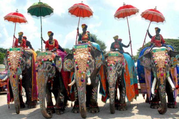 Mysore Dussehra Elephants