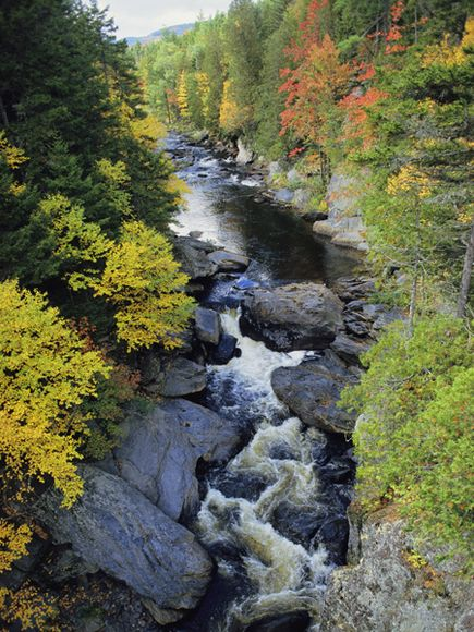 Maine River Gorge