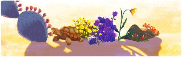 Desert and Tortoise