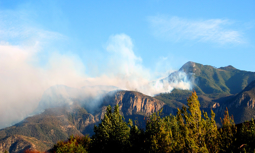 Prepare for a Wildfire – Security Tips