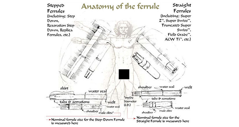 Anatomy of a Ferrule